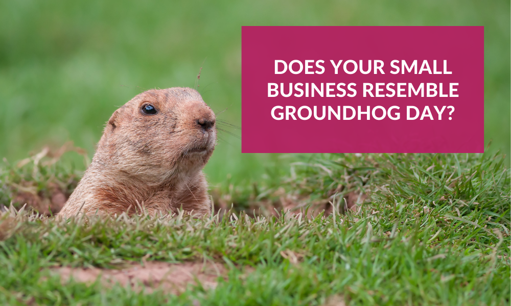 Groundhog popping out of the grass